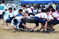 体育祭5.jpg