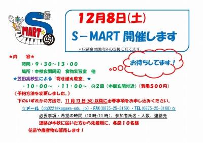 S-MART1.jpg